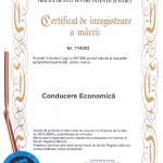 Conducere Economica